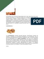 Alimentos Que Tienen Proteínas
