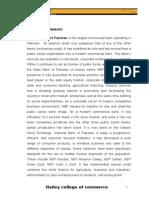 NBP Report.doc
