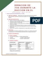 Practico 1y2 (INVESTIGACION)