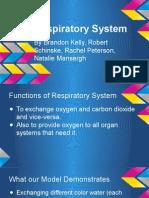 presentation for respiratory system