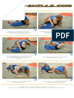 Mma Johnlewis Armbar Triangle