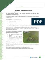 Articles-26497 Recurso Docx