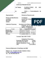 Gladiolos Promusag SAn Cristobal