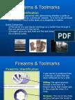 Firearms Toolmarks