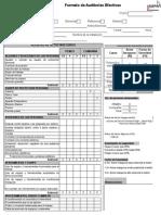 Formatos de Auditoria Efectiva