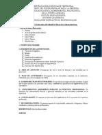 Estructura Del Informe de PP