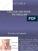 Lecture 9, Calcium and Bone Metabolism