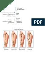 Resumão Ortopedia.docx