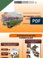 diversificacioncurricular-110715103909-phpapp01