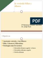 Patologia de vesicula y vias biliares