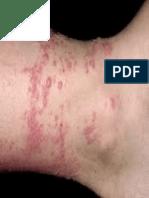 Dermatology Epub File.epub