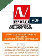 Seguridad y Salud Ocupacional Modulo II Ibnorca