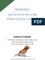 Aplicacion Microchip (6)