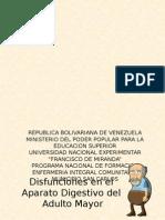digestivo-140824190621-phpapp01