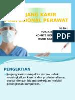 Jenjang Karir Profesional Perawat