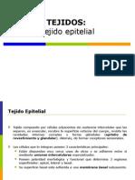 Tejido Epitelial Completo