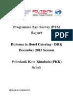 Programme Exit Survey (PES) DIS 2013 Session (DHK)