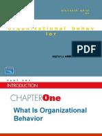 Perilaku Organisasi (Robbins12th)
