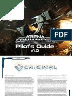 Arena Commander Manual