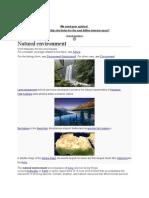 environment.docx