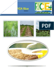 3rd March,2015 Daily Exclusive ORYZA Rice E_Newsletter by Riceplus Magazine