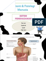 anatomifisiologimanusia-pencernaan-120923110823-phpapp02.ppt