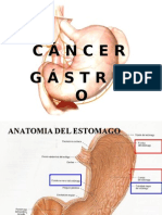 Cancer Gastrico Jenn 121102003457 Phpapp01