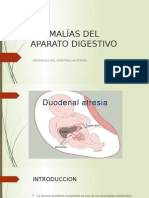 Anomalías Del Aparato Digestivo
