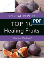 Healing Fruits Report