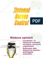sn central.ppt