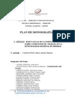 Monografía Iihbuyboi