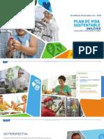 Resumen Perú 2013 Unilever