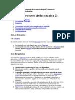 Demanda Procesos Civiles-1