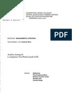 Proiect Managementul Strategic_grup5