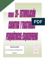 tema-20-power-esquizofrenia.pdf