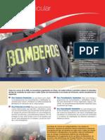 Malla Curricular 2015 Bomberos