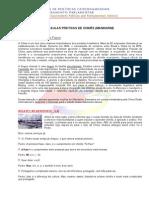 20_AULAS_PRATICAS_DE_CHINES.pdf