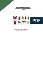Cuadro Entomologia Ambiente