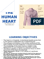 The Human Heart(1)