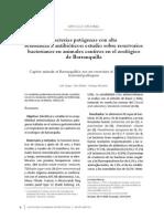 bacteria en animales.pdf