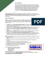 ADMINISTRACION DE SEGURIDAD MINERA.pdf
