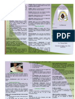 brochure bianka.pdf