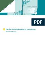 Gestión de Competencias en Los Procesos