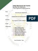 bioatalisis-enzimatica.doc