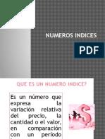 Exposicion Numero Indices