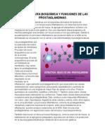 Estructura Bioquímica y Funciones de Las Prostaglandinas