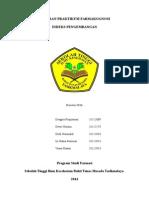 laporan indeks pengembangan