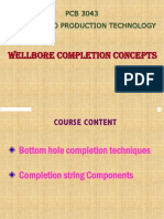 Wellbore Completion Concepts