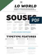 Souses English License