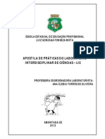 APOSTILA-LIC.pdf